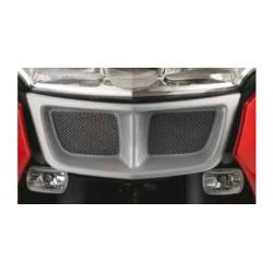 R 1200 RT 2005-2013 ✓ Grille de protection radiateur (-2009)