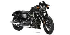 Sportster 833 Iron