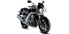 Speed Triple 900 1994-1996