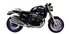 Thunderbird Sport 900 1998-1999